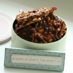 Peanøtter Brittle & Cranberry and Chocolate
