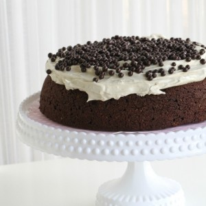 Moist Chocolate Cake & Mocca Cream