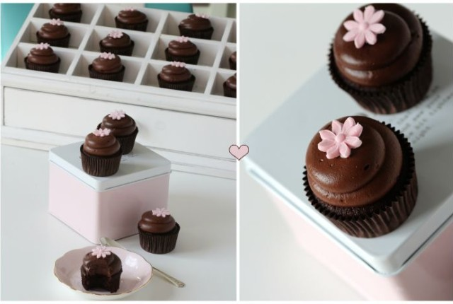 chocolate-cupcakes-luscious-chocolate-cream-cheese-frosting/